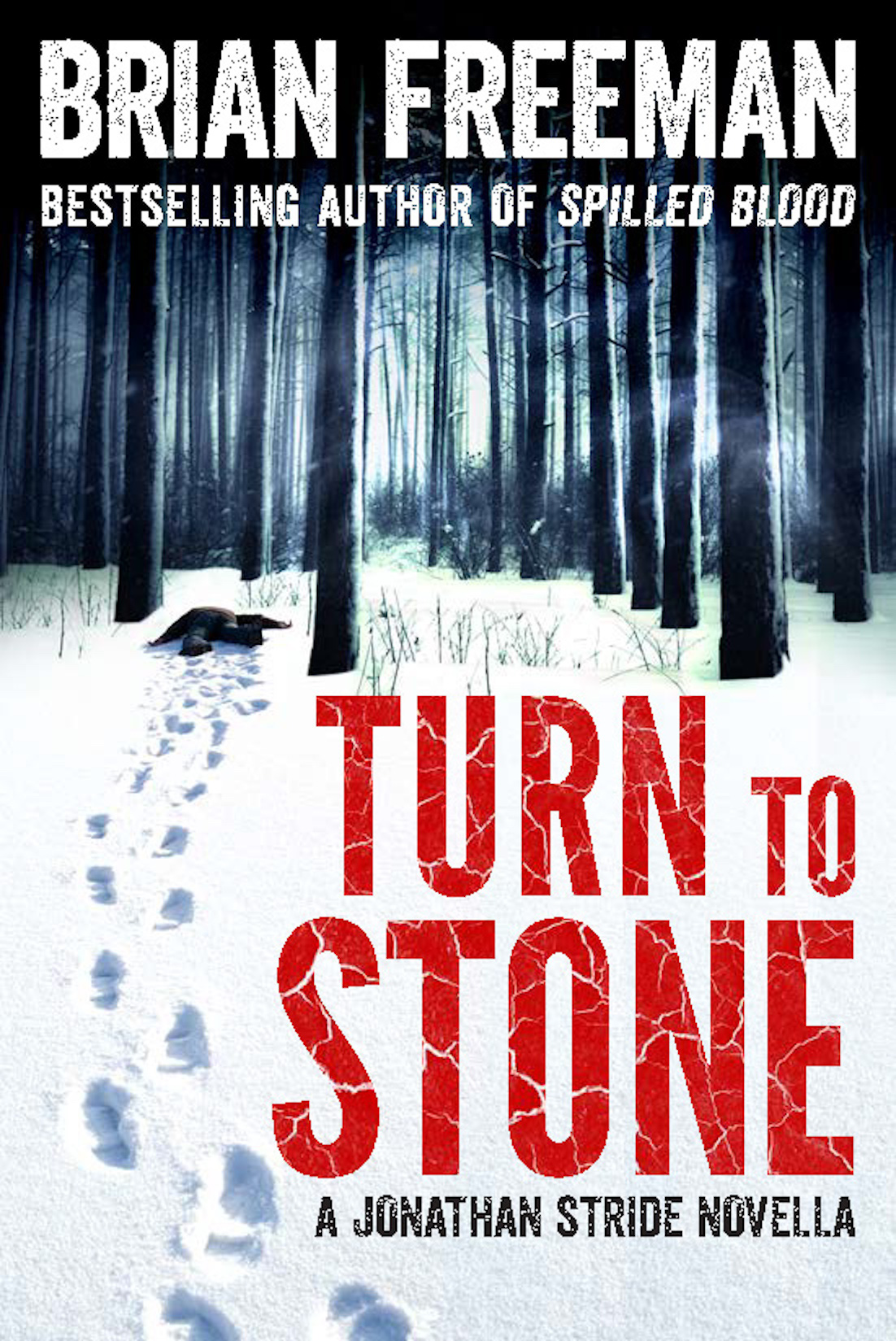 turn-to-stone-cover_website