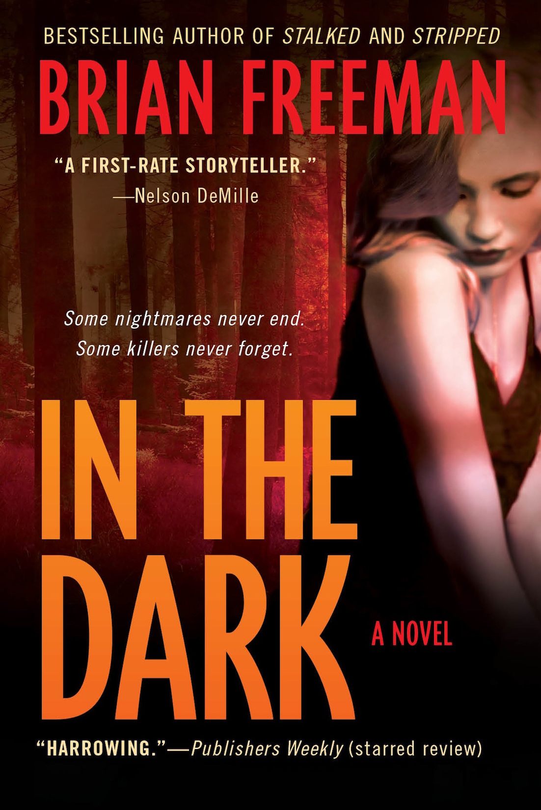 inthedark_paperback_cover_website